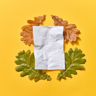 Composizione autunnale fatta a mano da foglie di quercia secche e verdi e un foglio di carta sgualcito