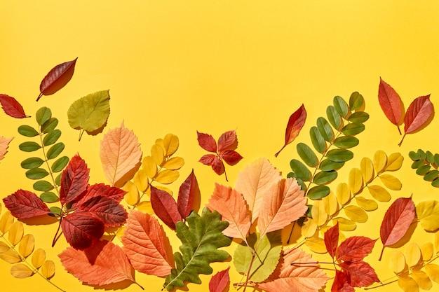 Fondo multicolore fatto a mano delle foglie