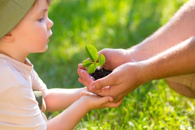 Mani di un bambino che prendono una pianta dalle mani di un uomo. concetto eco giornata della terra