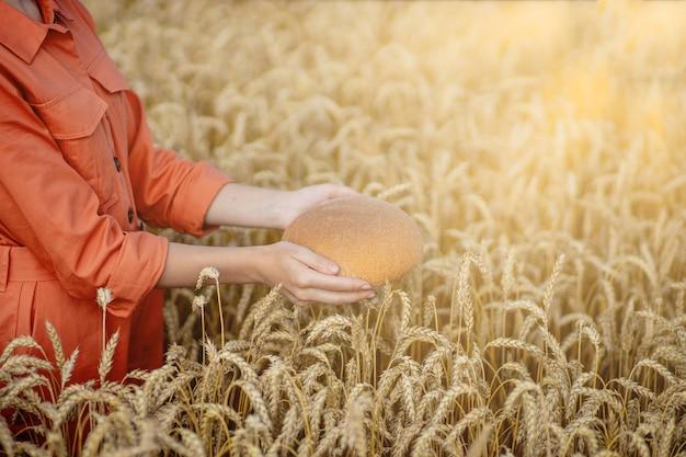 Mani del contadino che tiene il pane di crusca appena sfornato di spighe di grano dorato di farina cruda sana