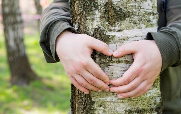 Mani che formano una forma di cuore intorno a un grande albero. uomo che abbraccia un grande albero, amore o protezione del concetto di natura