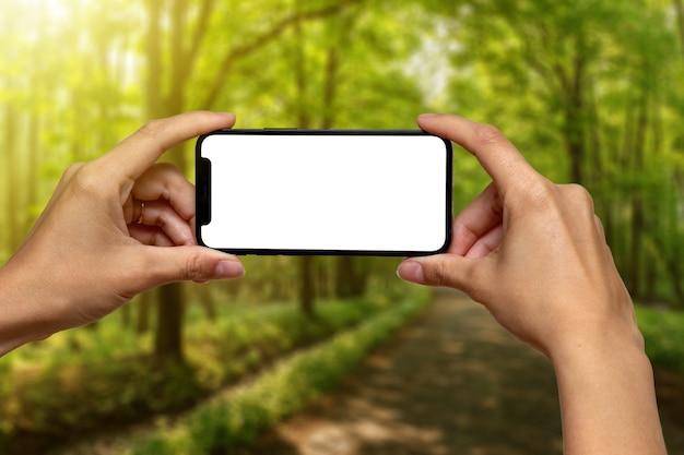 Mani che tengono il telefono con lo schermo bianco davanti alla foresta