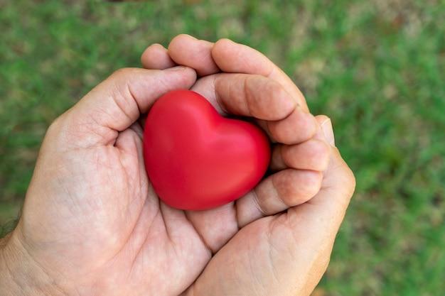 Mani che tengono cuore rosso, sfondo sfocato