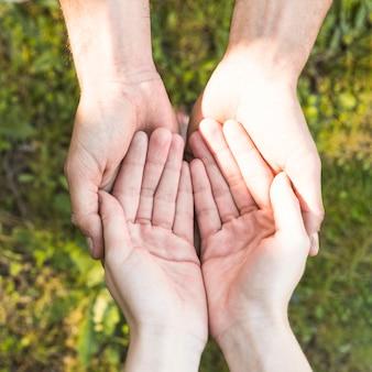 Mani che mantengono sopra l'erba verde