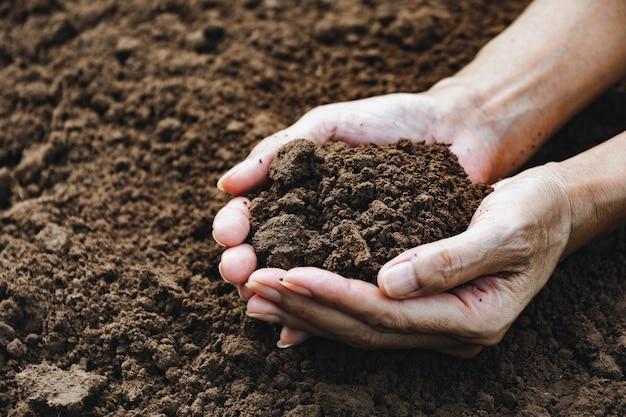 Mani dell'uomo che tiene il suolo