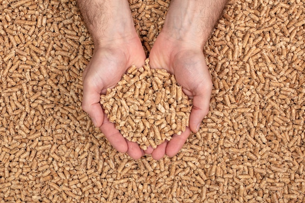 Mani che mostrano pellet di legno