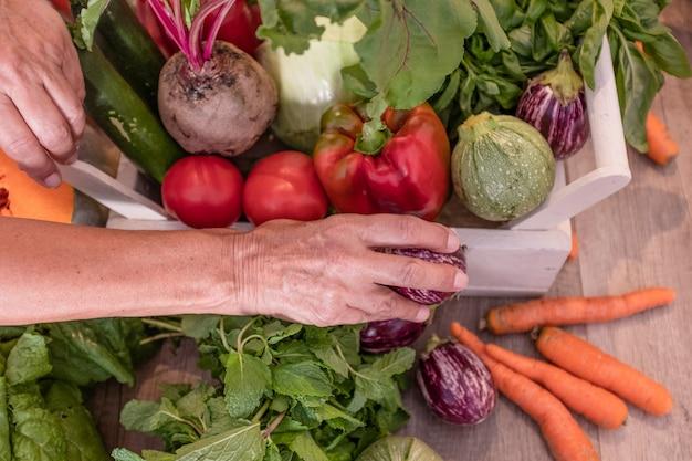 Le mani della donna raccolgono il raccolto di verdure in un cestino bianco. dieta, vegetariano, concetto di disintossicazione