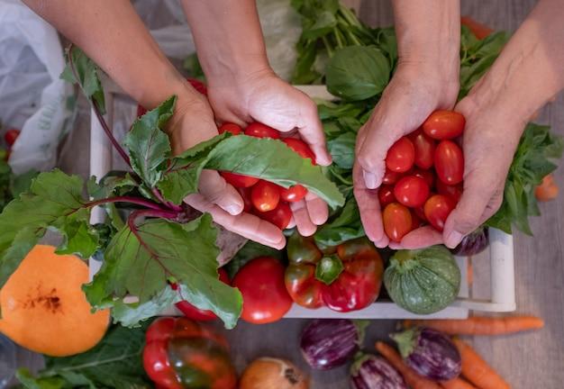 Mani di donne che tengono piccoli pomodori rossi. mix di verdure fresche sul tavolo. dieta, sano, concetto vegetariano