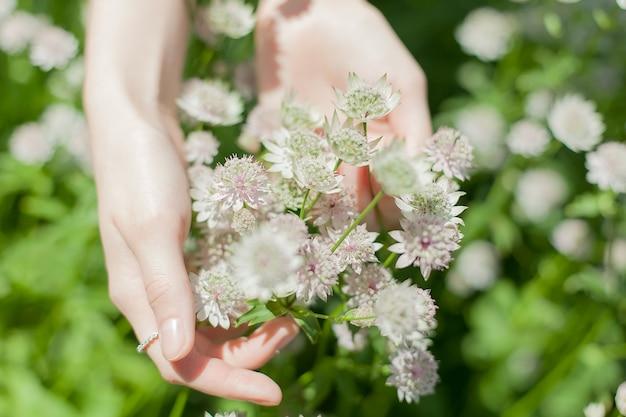 Le mani di una giovane donna abbracciano teneramente i fiori nel campo.