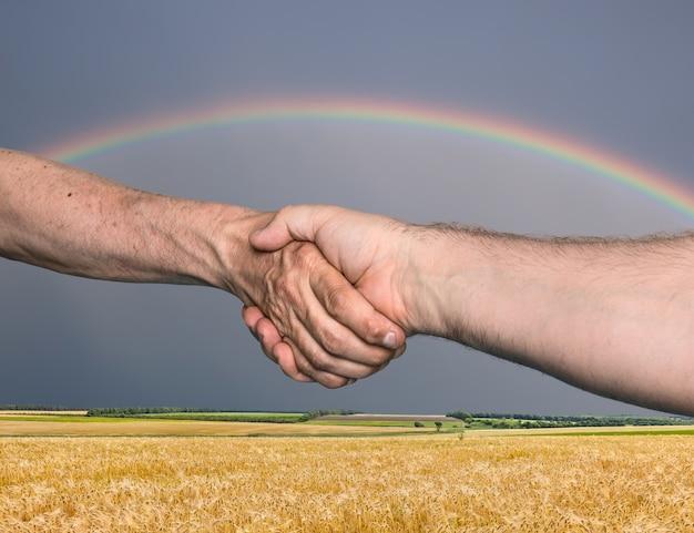 Stretta di mano. stretta di mano di due persone di sesso maschile contro il campo di grano dorato con arcobaleno