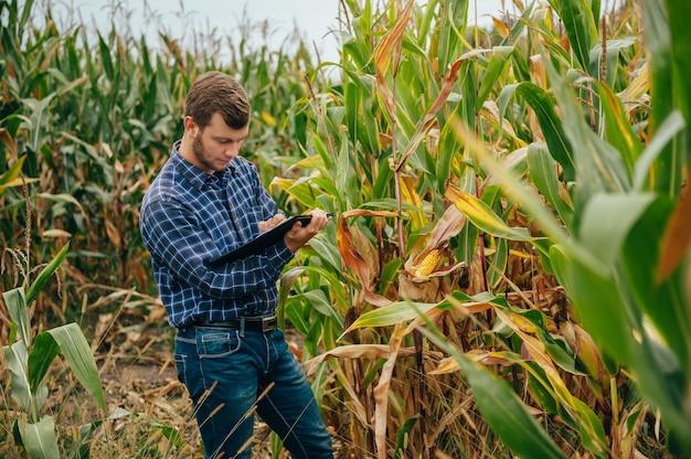 Bello agronomo tiene tablet touch pad computer nel campo di mais ed esamina i raccolti prima della raccolta