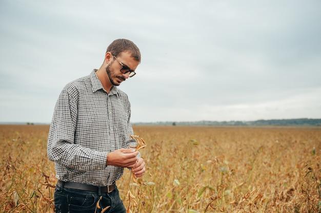 Bello agronomo tiene tablet touch pad computer nel campo di soia ed esamina i raccolti prima della raccolta