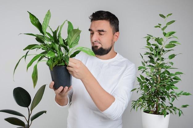Uomo barbuto bello che tiene pianta d'appartamento con vaso di giglio di pace nelle mani e sorridente