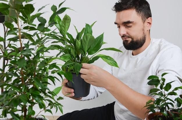 Uomo barbuto bello che tiene pianta d'appartamento con vaso di giglio di pace nelle mani