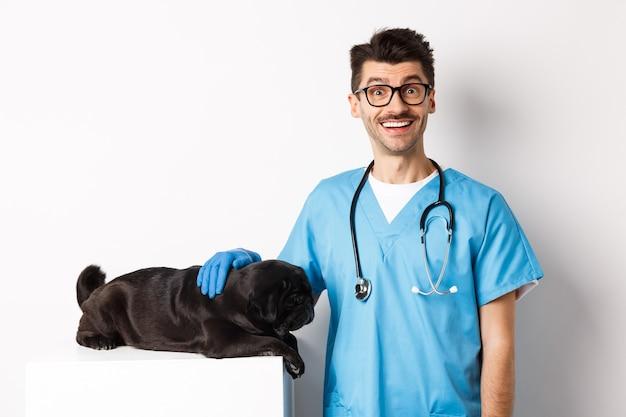 Bel medico veterinario sorridente che accarezza un simpatico cagnolino carlino e guardando felice la telecamera, esaminando il cucciolo alla clinica veterinaria, in piedi su sfondo bianco