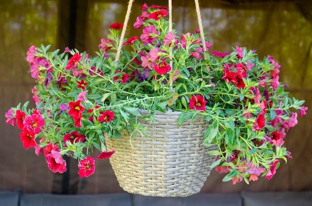 Vasi sospesi con fiori ampel, design di case da giardino. foto dello studio.