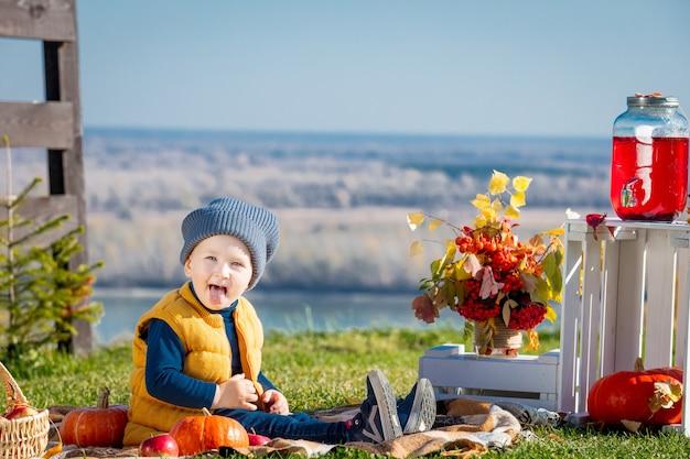 Felice e bellissimo bambino all'aperto durante un picnic con zucche a quadri e decorazioni autunnali