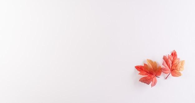 Felice giorno del canada segno e simbolo concetto realizzato da seta rossa foglie di acero su sfondo bianco