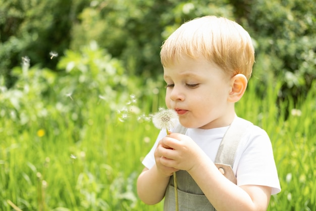 Felice carino bambino biondo che soffia fiore di dendelion nel parco verde.