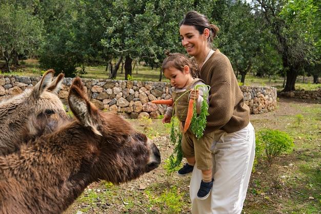Felice madre etnica e bambino che alimentano simpatici asini in terreni agricoli