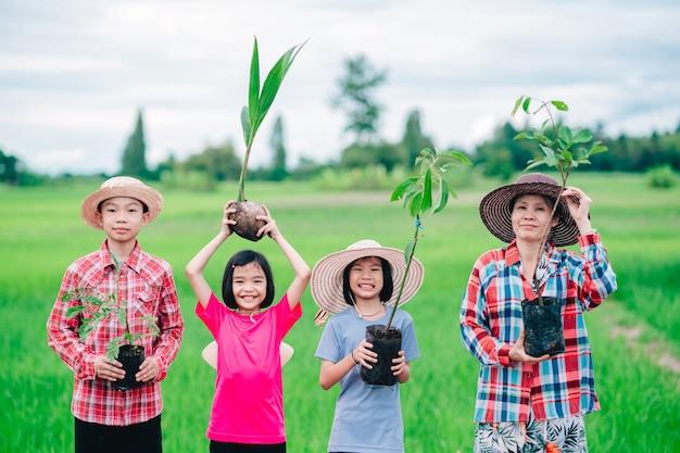 Gente di famiglia felice che tiene la semina dell'albero per piantare in giardino su un campo di riso verde biologico