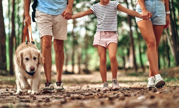 La famiglia felice con zaini e cane labrador sta camminando nella foresta. mamma papà e la loro figlia nel fine settimana. campeggio, viaggi, escursioni.