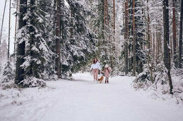 Famiglia felice giovane madre e piccola ragazza carina in outwear caldo rosa camminare divertendosi con il cane rosso shiba inu nella foresta di inverno freddo bianco nevoso all'aperto. attività per le vacanze sportive in famiglia.