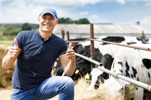 L'agricoltore felice sta lavorando all'allevamento di mucche