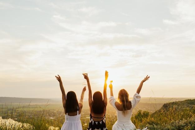 Amici felici hanno alzato i bicchieri e festeggiato al picnic estivo.