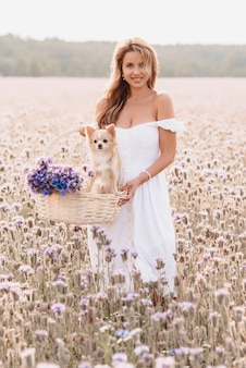 Ragazza felice con il simpatico cane chihuahua in un cesto con un mazzo di fiori in natura nel campo in estate