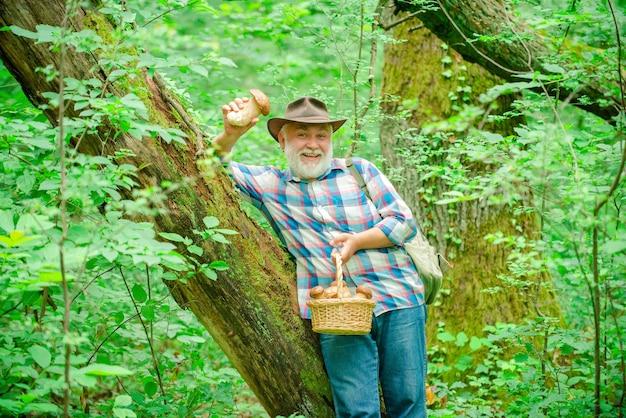 Nonno felice con funghi in busket a caccia di funghi che si moltiplicano in natura