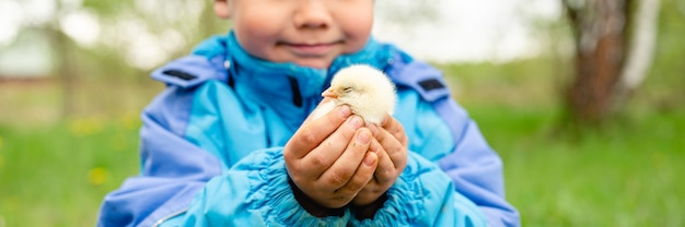 Il piccolo contadino felice del ragazzo del bambino tiene un pollo del neonato nelle sue mani nella natura all'aperto. stile di campagna.