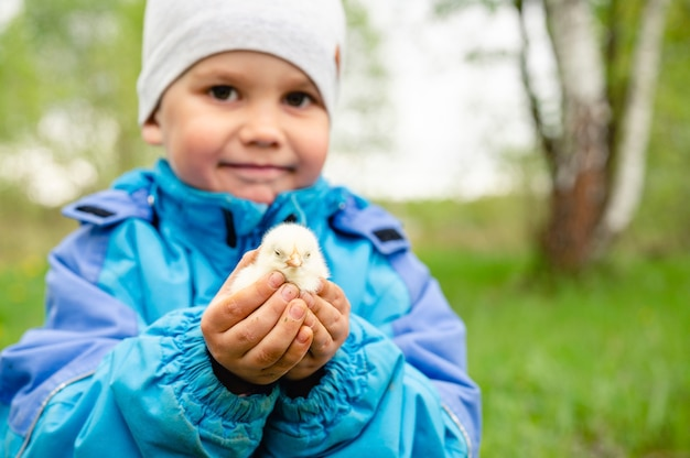 Il piccolo contadino felice del ragazzo del bambino tiene un pollo del neonato nelle sue mani nella natura all'aperto.