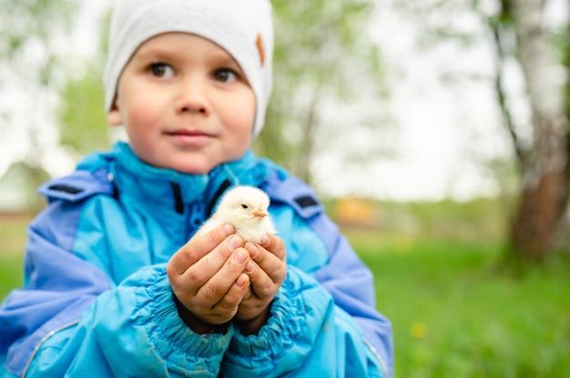 Il bambino felice tiene un pollo neonato nelle sue mani