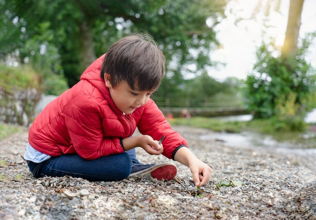 Bambino felice che si siede sui ciottoli, chid che gioca con erba selvatica e ciottoli in riva al lago