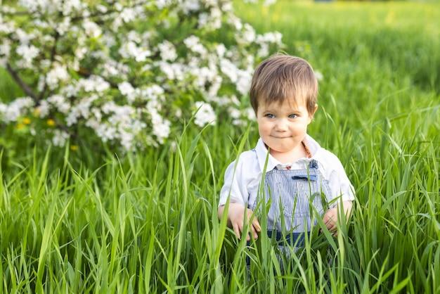 Ragazzino felice in tuta blu alla moda con bellissimi occhi azzurri. divertenti giochi nell'erba alta verde in un parco fiorito pieno di verde sullo sfondo di un melo.
