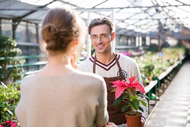 Felice giardiniere maschio che tiene una pianta in vaso con foglie colorate e parla con una giovane donna in serra