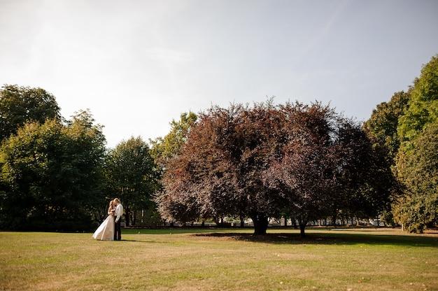 Coppia sposata felice in piedi su un campo di erba verde con un albero grande e bello