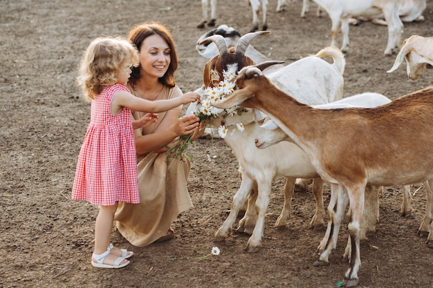 Madre felice e sua figlia nutrono le capre in una fattoria ecologica.