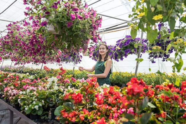 Felice proprietario di una fattoria di fiori che annaffia e si prende cura dei fiori
