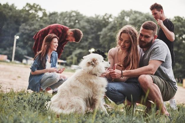 Felici proprietari di un simpatico cane. un gruppo di persone fa un picnic sulla spiaggia. gli amici si divertono durante il fine settimana.