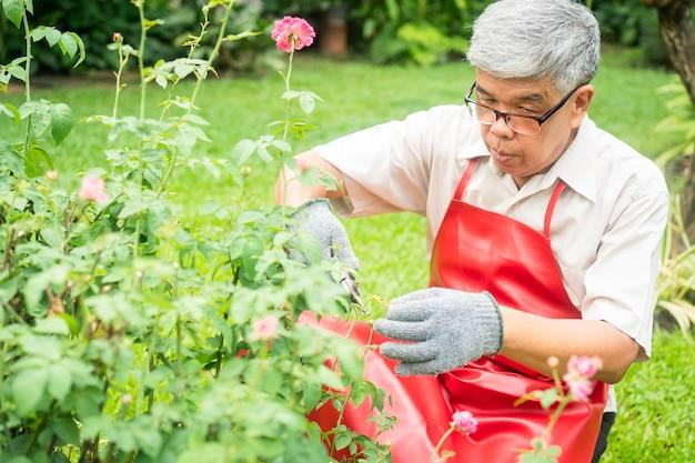 Un uomo anziano anziano asiatico felice e sorridente sta potando ramoscelli e fiori per un hobby dopo il pensionamento in una casa.