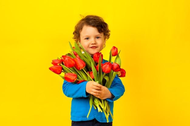 Un bambino sorridente felice tiene un enorme mazzo di tulipani rossi per sua madre su un giallo brillante