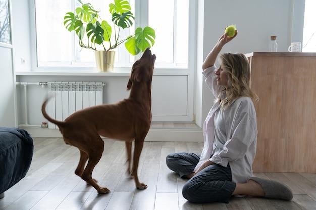 Proprietaria felice della donna con il suo cane vizsla che gioca con la pallina da tennis a casa seduto sul pavimento