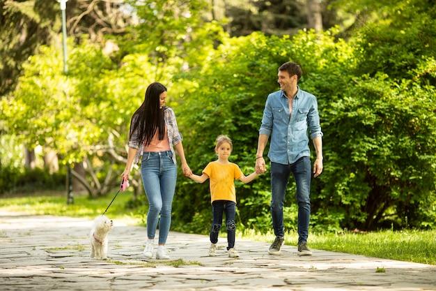 Felice giovane famiglia con simpatico cane bichon nel parco