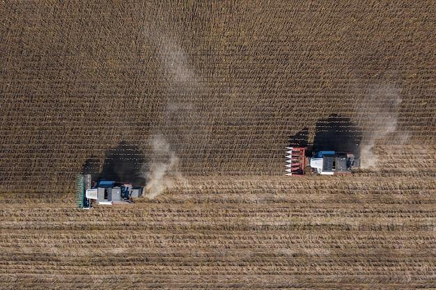 Raccolta di semi di girasole, vista aerea