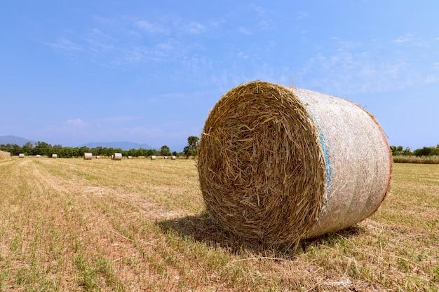 Rulli di fieno su un campo di villaggio nel nord italia.