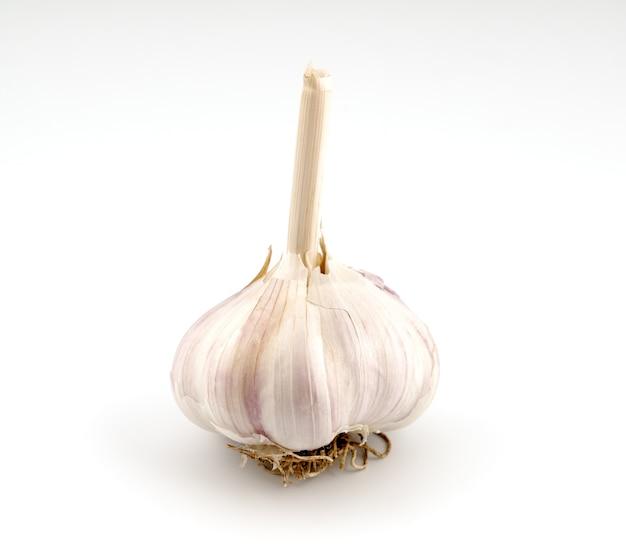 Testa d'aglio isolata su sfondo bianco