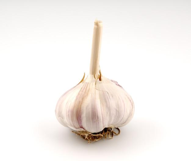 Testa d'aglio isolata su sfondo bianco white