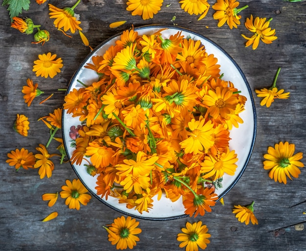 Teste di fiori di calendula arancione su un piatto per preparare flatlay